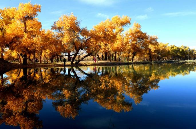 아름다운 후양 가을 풍경에 취해
