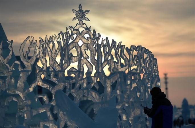 '얼음' 위에 활짝 핀 연꽃