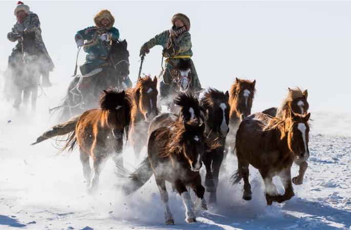 말 타고 설원 달리기