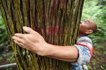 40여년간 푸른산 지킨 '산림 수호자들'