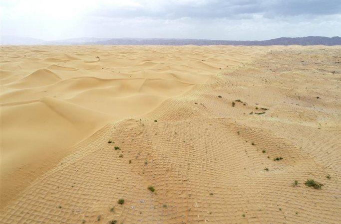 中 닝샤 사구울타리 설치해 사막녹지화