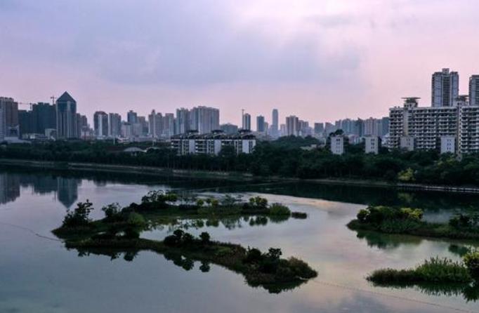 녹색 도시의 운치 있는 가을 풍경