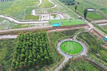 생화경제의 발전으로 농촌진흥에 조력