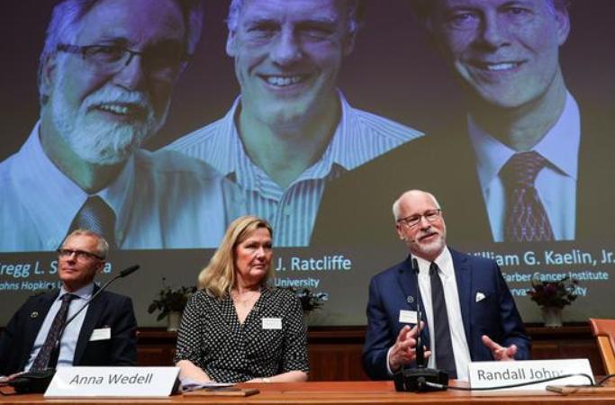 2019년 노벨 생리의학상 과학자 3명 공동 수상
