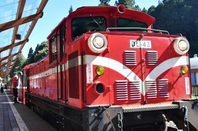 아리산 삼림 미니 기차