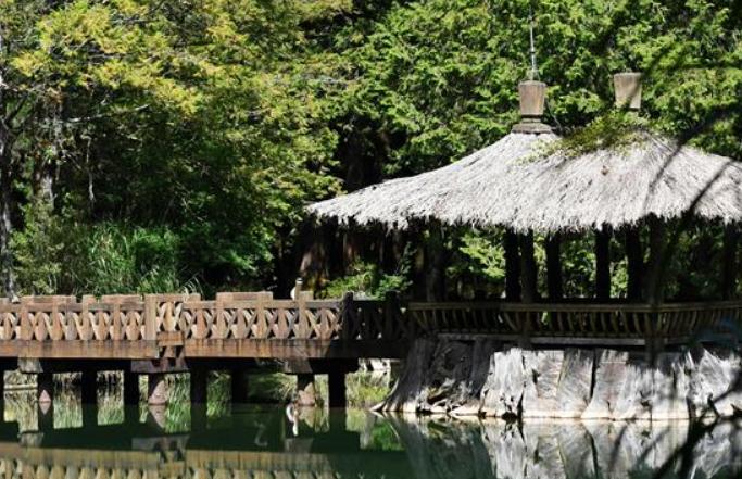 한 폭의 가을 풍경화 그려 놓은 듯한 아리산