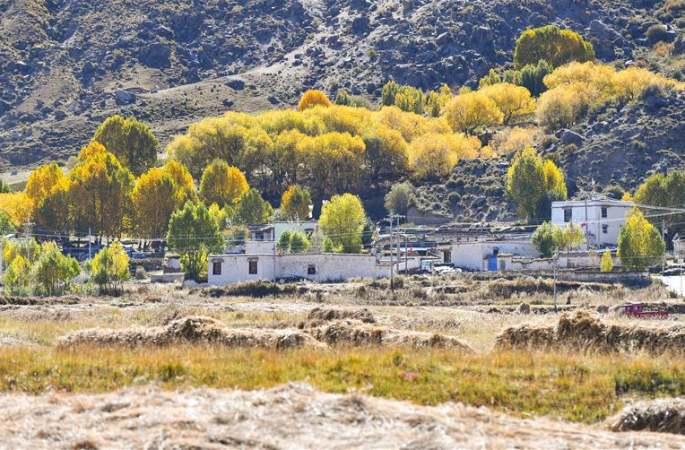 라싸: 가을색으로 곱게 물든 추부거우