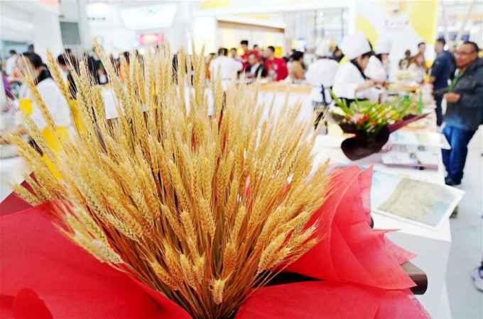 '벼향기 풍기는 세계'…헤이룽장 국제 쌀 축제 개막