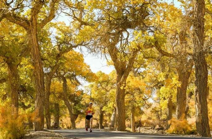마라톤—네이멍구 어지나 후양림 횡단 국제마라톤대회 개막