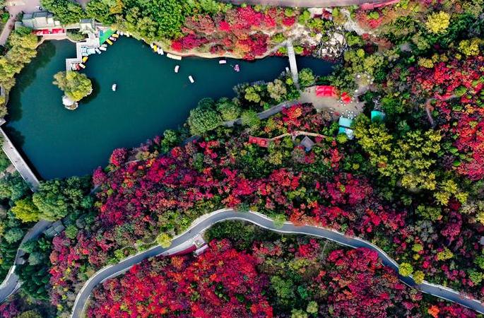 알록달록 색채의 향연 이룬 단풍 계곡