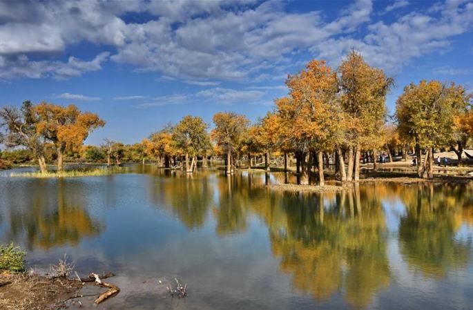 후양과 함께 깊어가는 가을