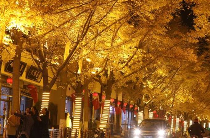 화려한 톈수이 '황금대로'