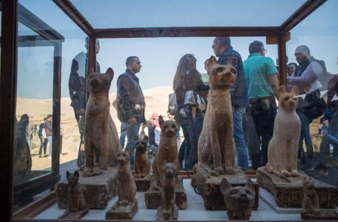 이집트 사카라서 2700년 전 동물 미라 발견