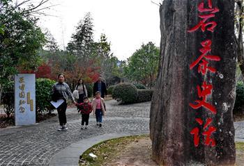 우이산 다훙파오 체험센터 개원