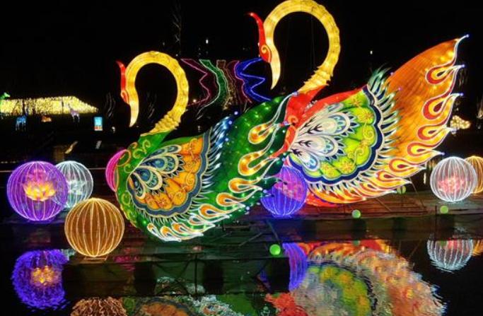장쑤: 오색등 향연…설날 분위기 물씬