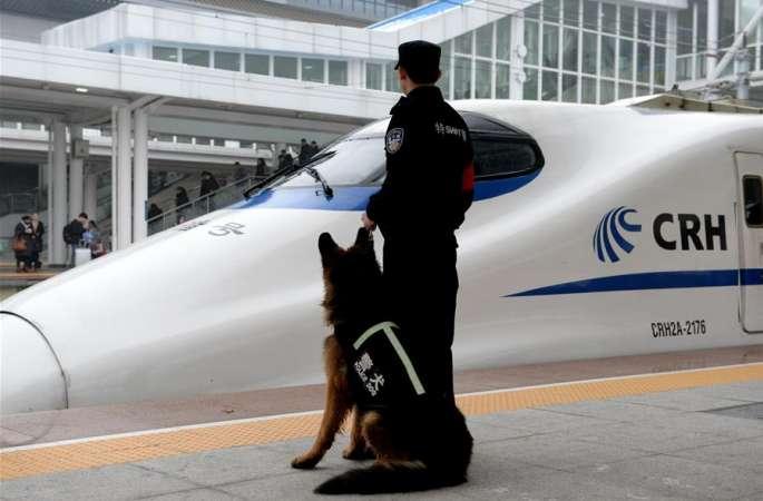 경찰견 '선웨이'…설날 귀성길 안전지킴이로 맹활약
