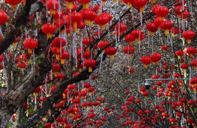 충칭 쳰장: 새해맞이 등롱으로 장식된 거리