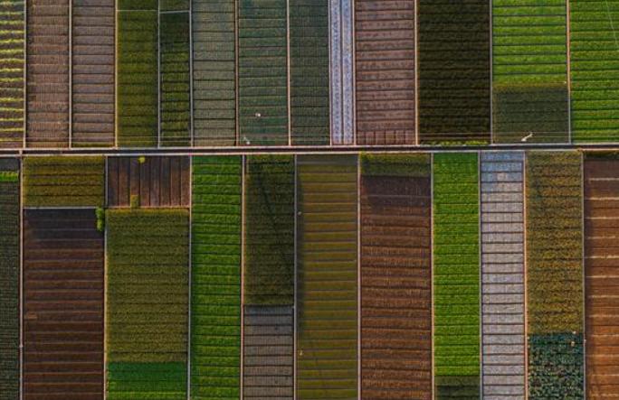 윈난 퉁하이: 전원시 풍경 펼쳐져