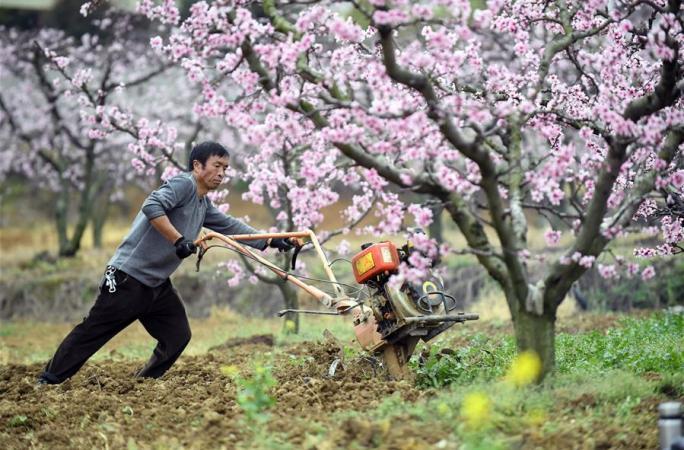 꽃숲에서의 노동