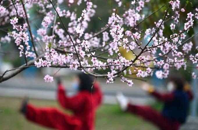 후베이 언스: 광장·공원 등 다시 개방