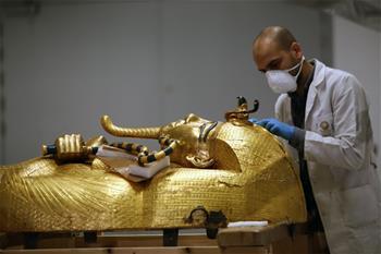 이집트, 코로나19 확진 환자 2190명으로 늘어