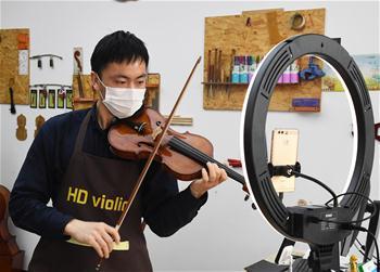 베이징 핑구: 온라인으로 바이올린 판매