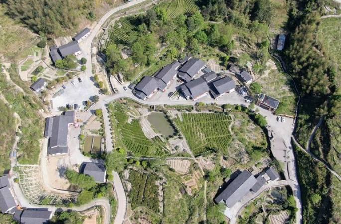 장시 징강산: 산업 발전으로 탈빈곤 성과 공고화
