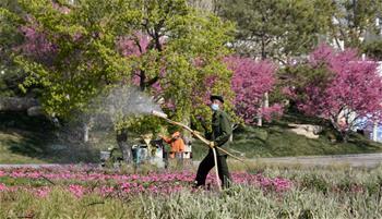 제1회 베이징국제가든축제 세계원예공원서 개막