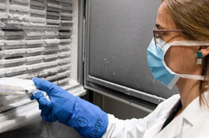스페인 실험실, 바이러스 샘플 연구 진행