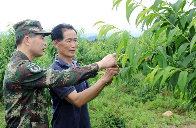 산간마을 누비며 빈곤퇴치에 희망을 심어—전인대 대표 저우펑린 직무 수행 스토리