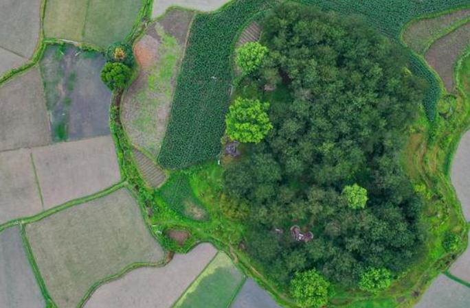 구이저우: 푸르름 더해가는 전원 풍경