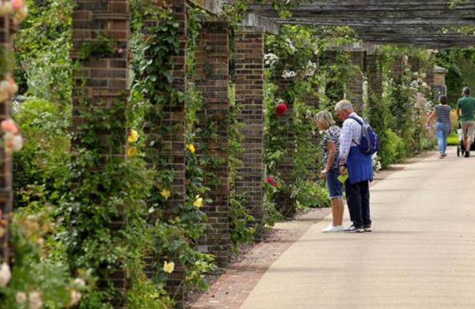 런던 큐 왕립식물원 재개방