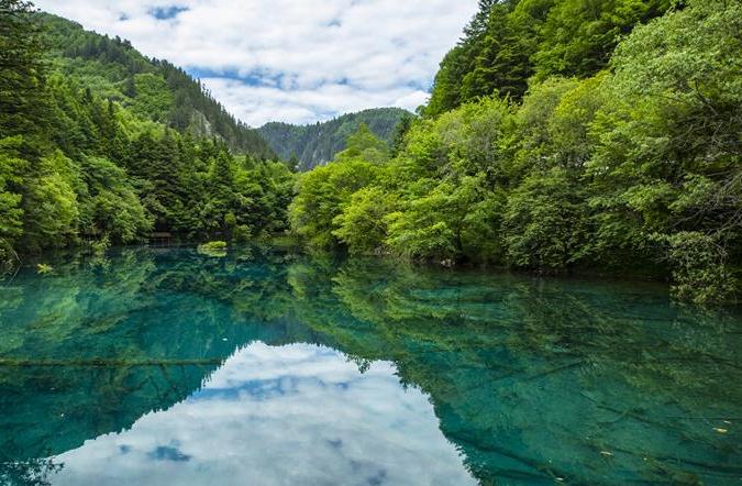 아름다운 아바 생태낙원