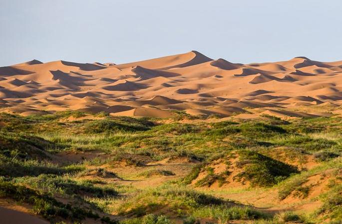 텅거리 사막의 여름 정취