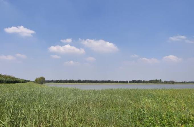 맑은 물 초록빛 연안…물새들의 낙원