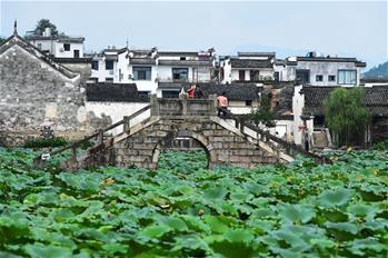 허페이-푸저우 고속철도 주변의 천 년 역사가 숨 쉬는 옛 마을